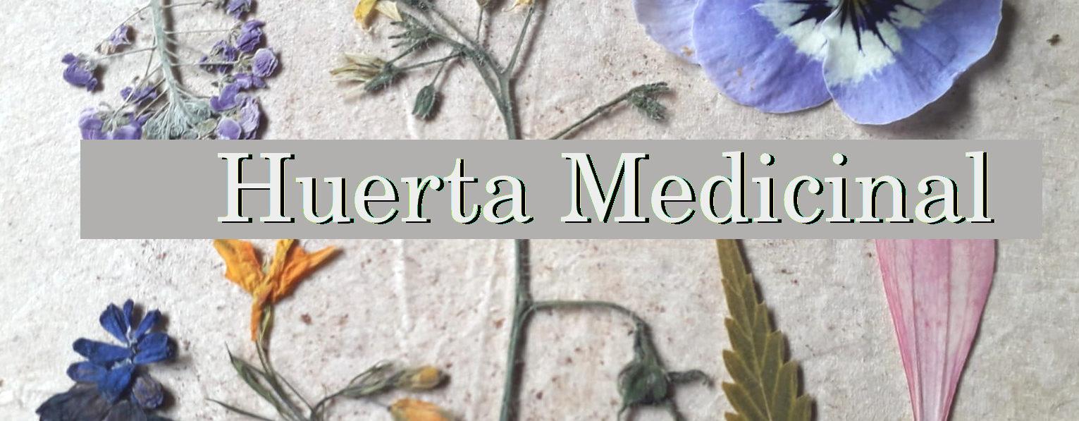 Huerta Medicinal